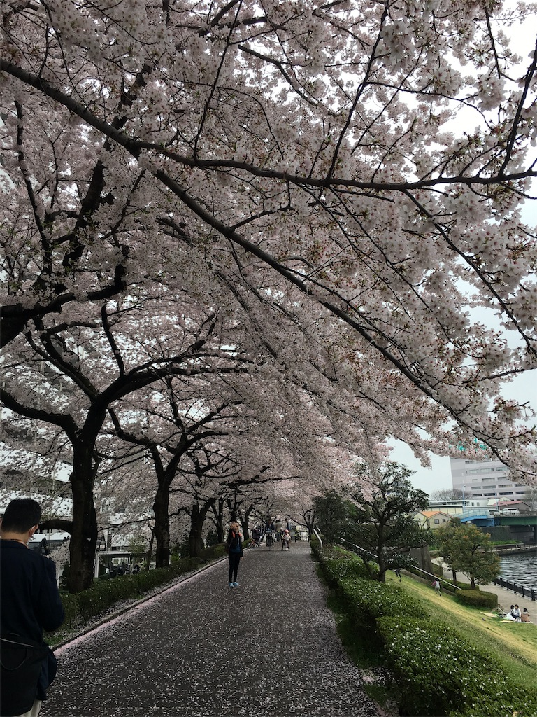 f:id:yasukoito:20170408234139j:image