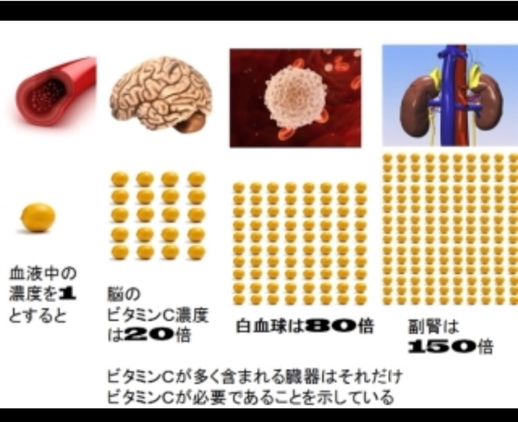 f:id:yasukoro1986227:20161028023041j:image