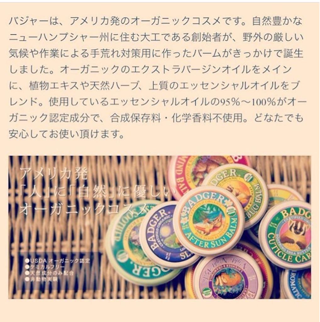 f:id:yasukoro1986227:20161110035613j:image