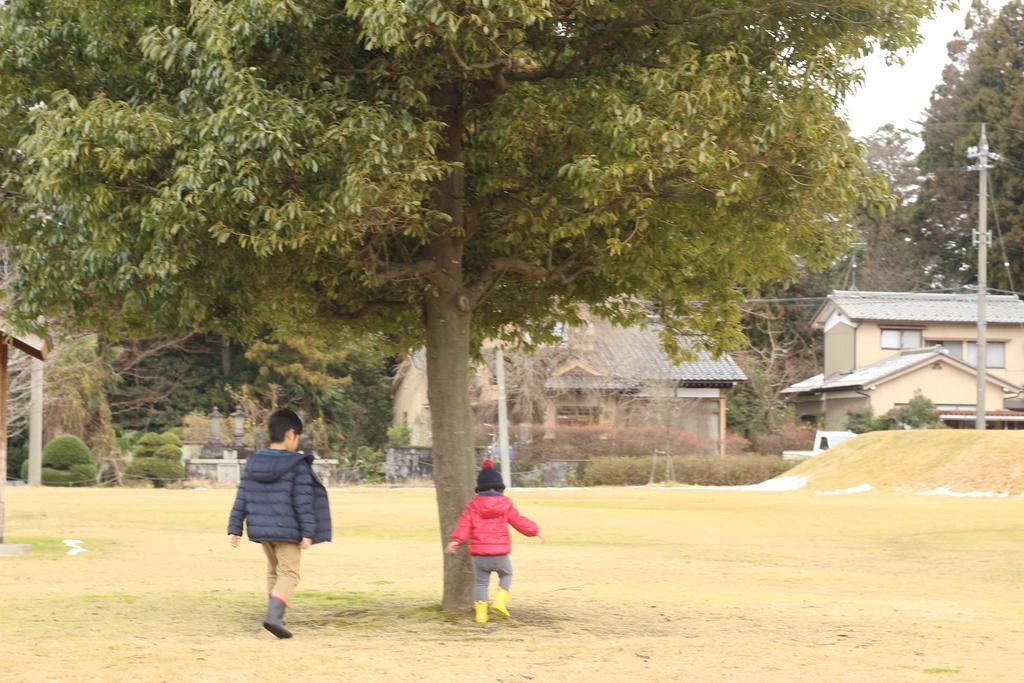 f:id:yasukosakaguchi:20190125123819j:plain