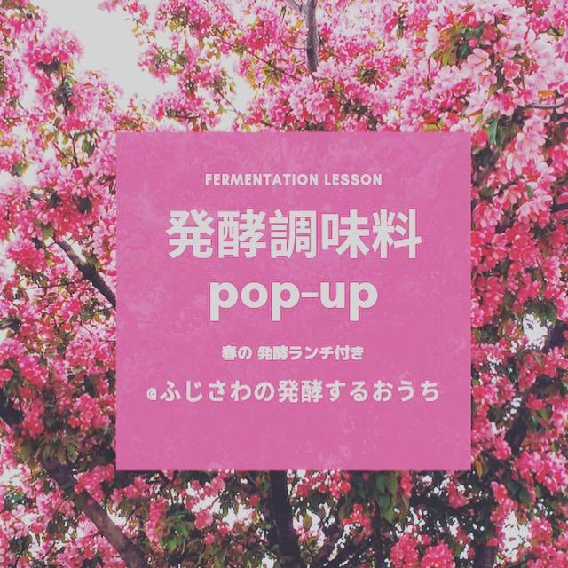 f:id:yasukosakaguchi:20190313154528j:plain
