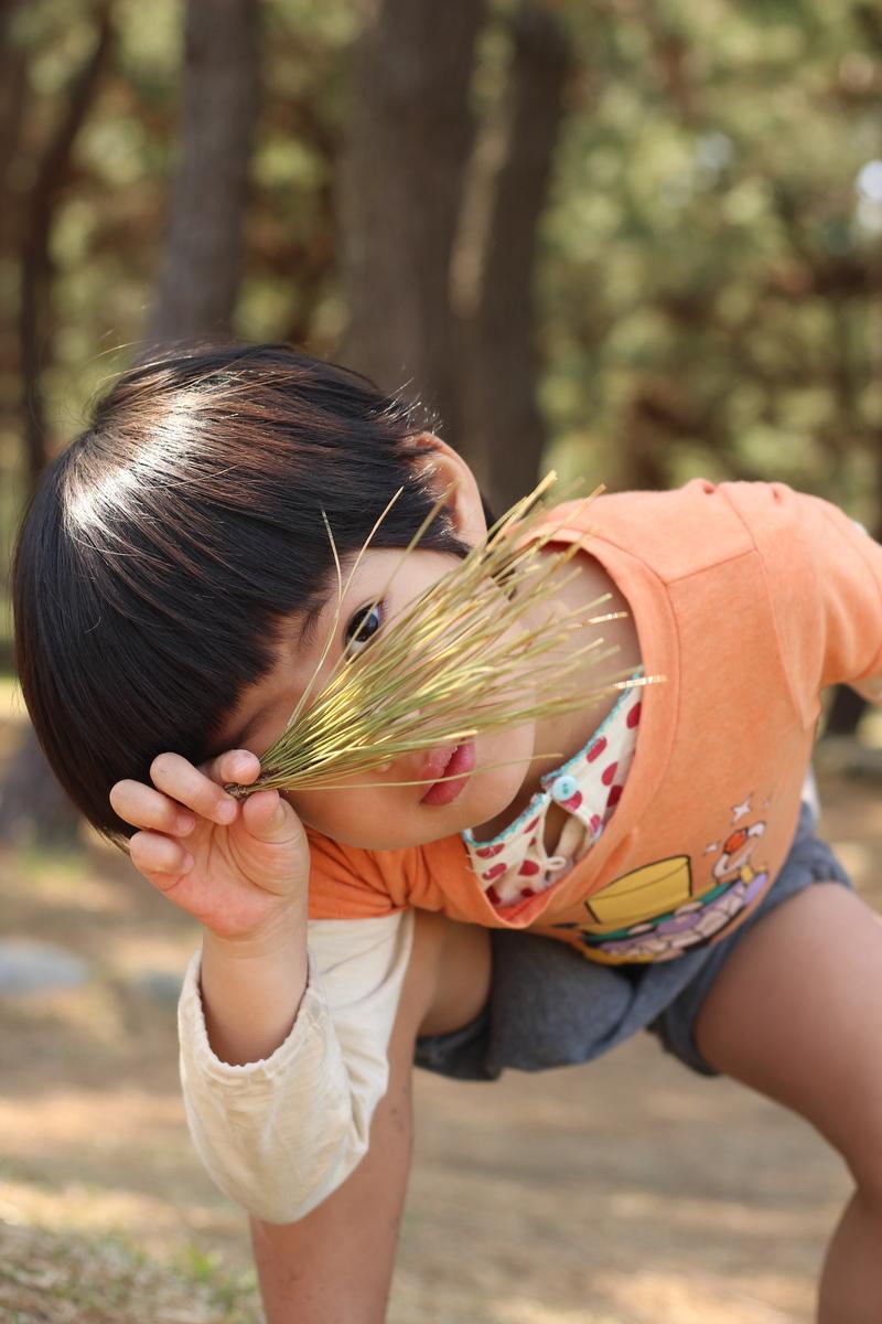 f:id:yasukosakaguchi:20200423114755j:plain