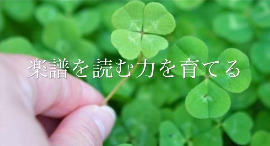 f:id:yasukotyd39:20181118081658j:image
