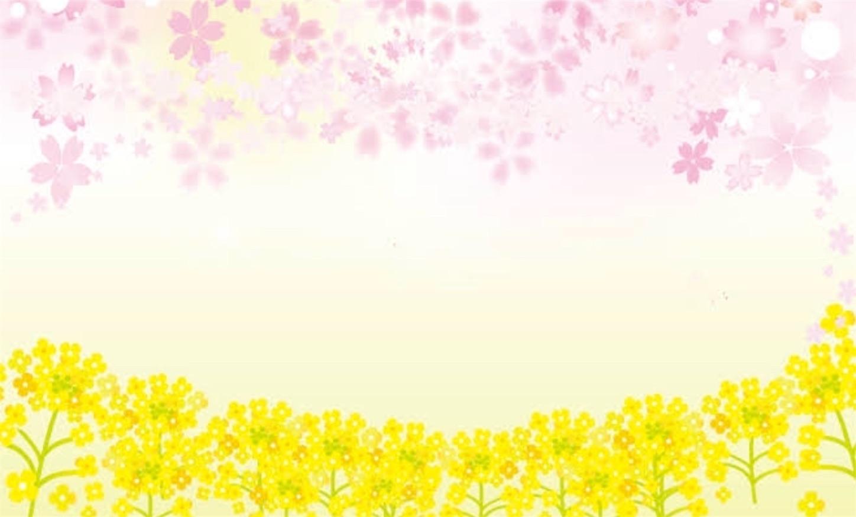 f:id:yasukotyd39:20190311121825j:image