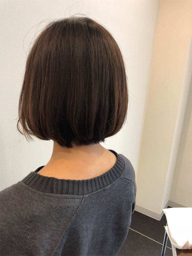 f:id:yasukumi74:20171221215548j:image