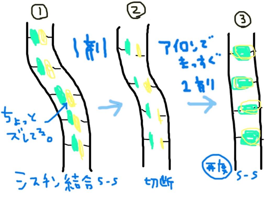 f:id:yasukumi74:20180606235624j:image