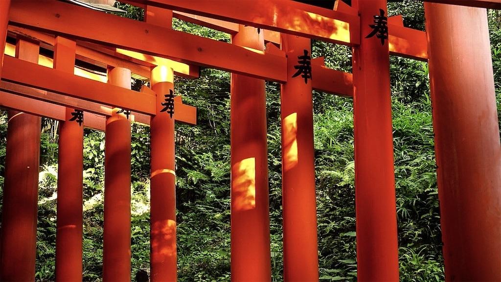 f:id:yasukun2228:20200107200123j:image