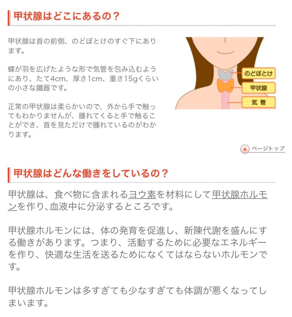 f:id:yasukun2228:20200301155402j:image
