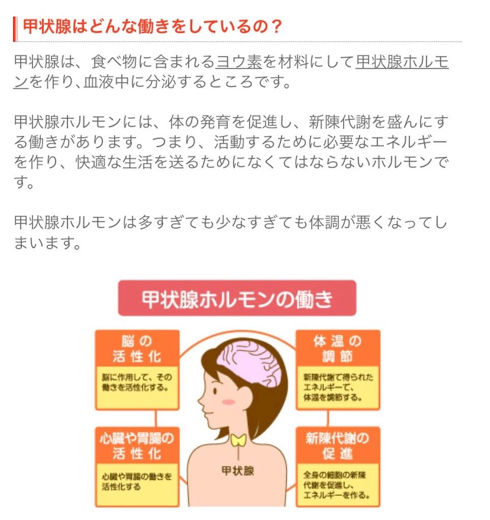 f:id:yasukun2228:20200301161115j:image