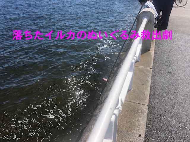 f:id:yasukuratonio:20190924003348j:plain