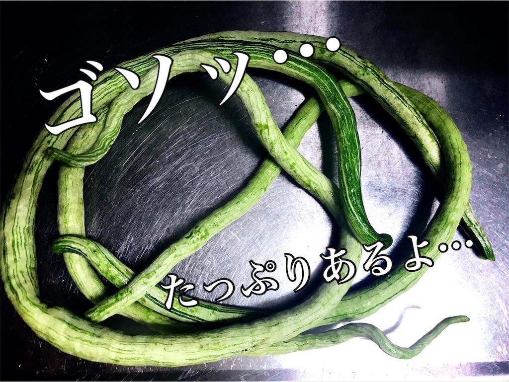 f:id:yasumarutaiwan:20200529121759j:image