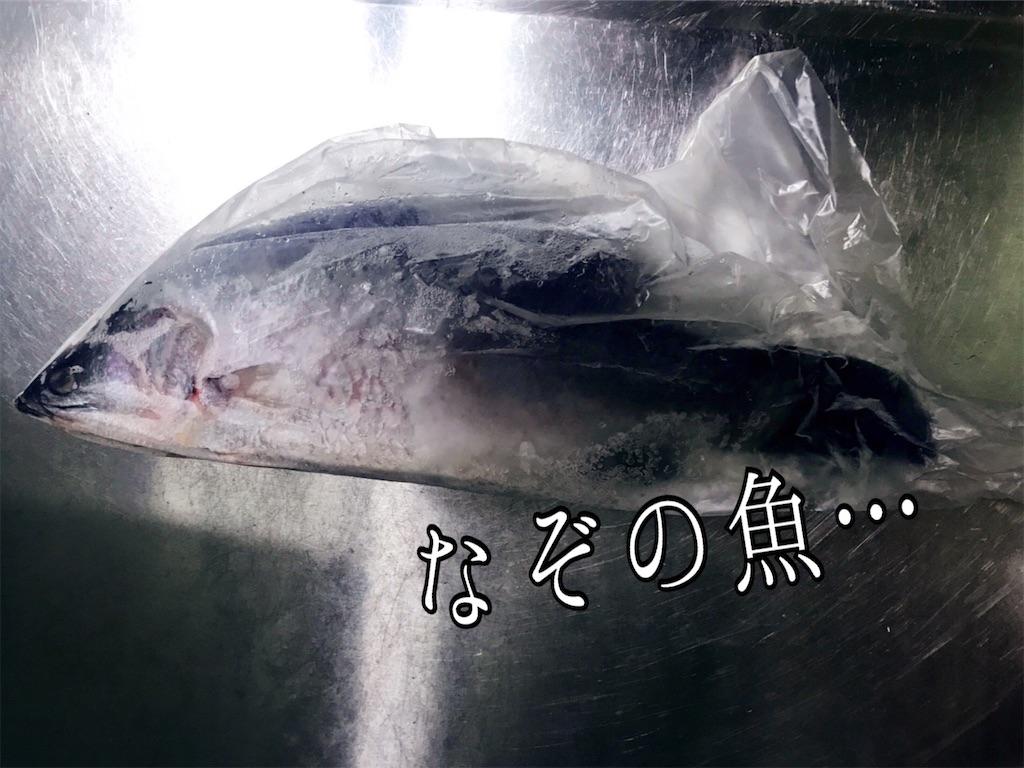 f:id:yasumarutaiwan:20200602161119j:image