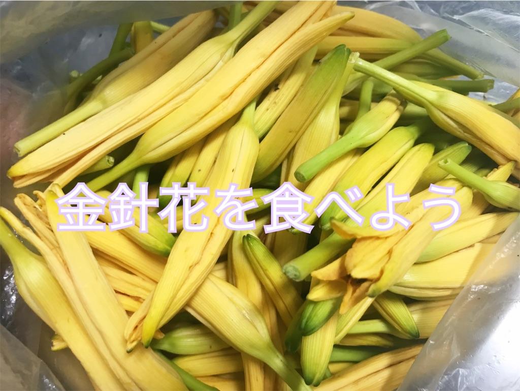 f:id:yasumarutaiwan:20200616162955j:plain