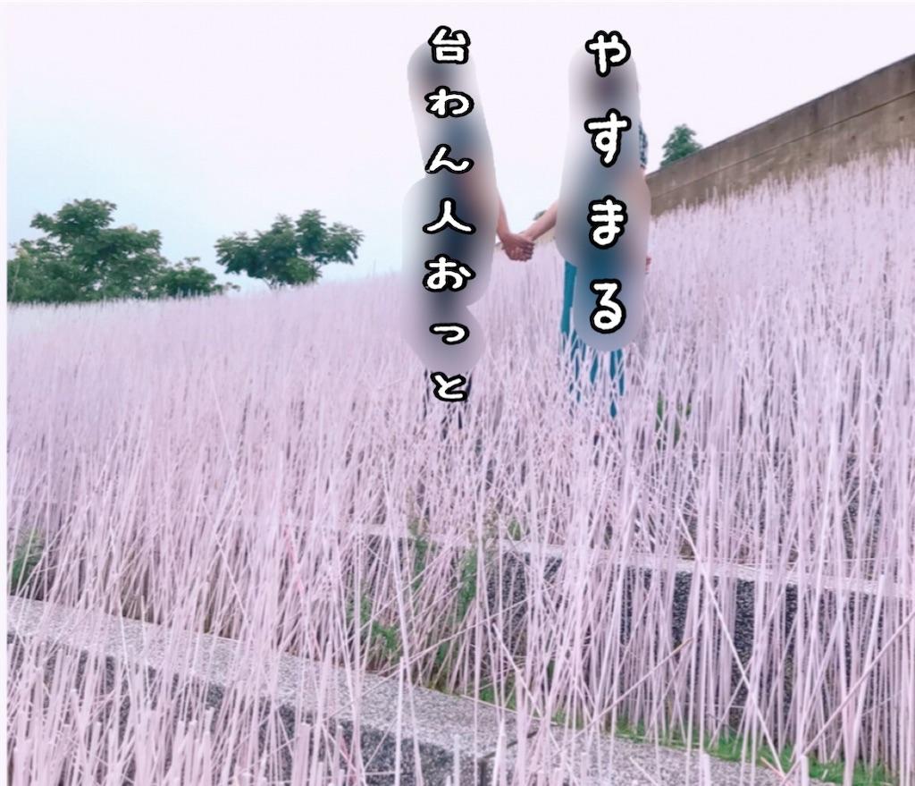 f:id:yasumarutaiwan:20200625235459j:plain
