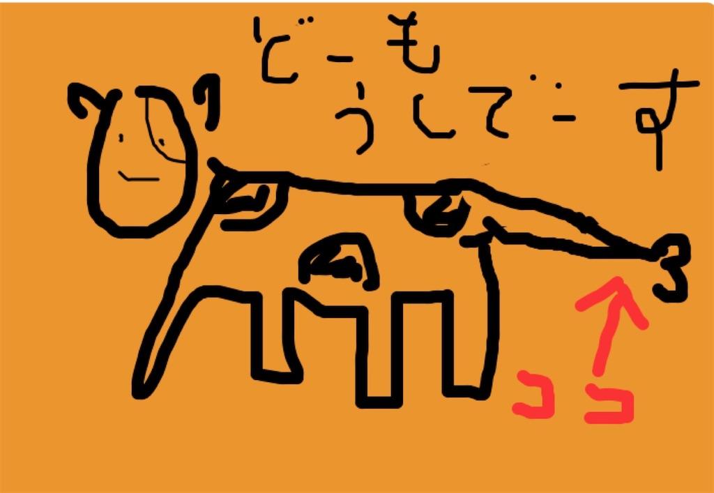 f:id:yasumarutaiwan:20200818154509j:plain