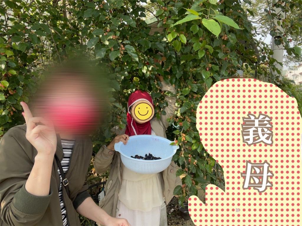 f:id:yasumarutaiwan:20210416201609j:plain