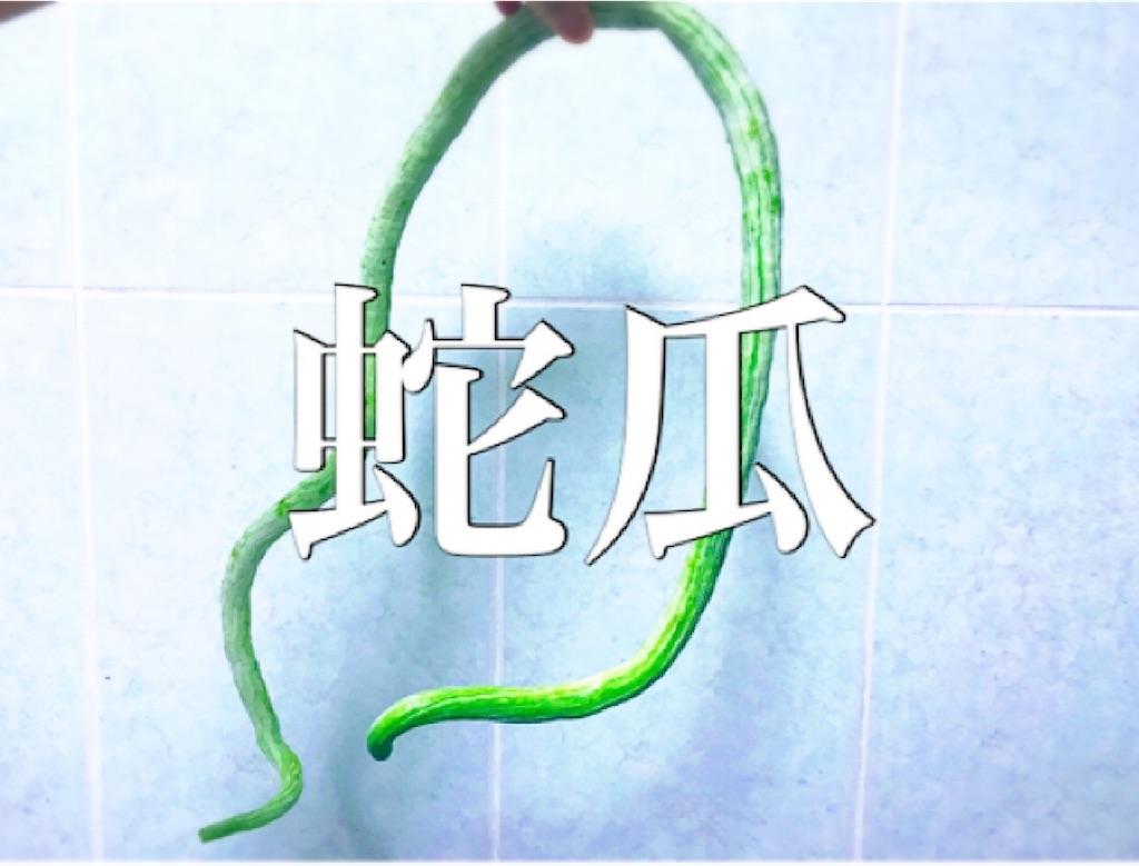 f:id:yasumarutaiwan:20210802151002j:plain