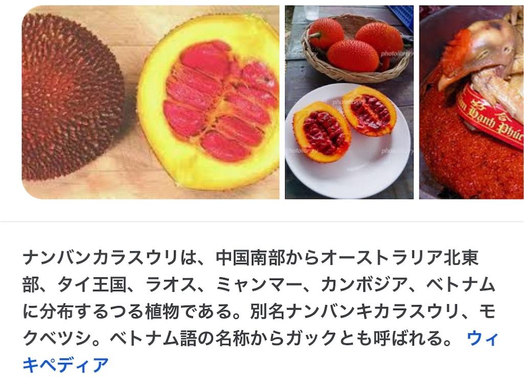 f:id:yasumarutaiwan:20210830162040j:plain