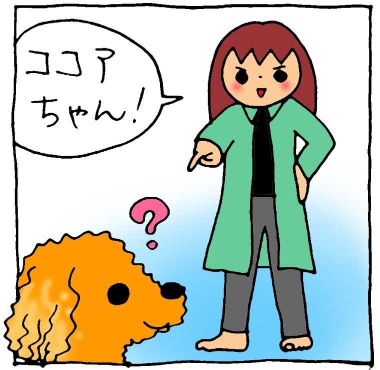 f:id:yasumi-08:20160117115716j:plain