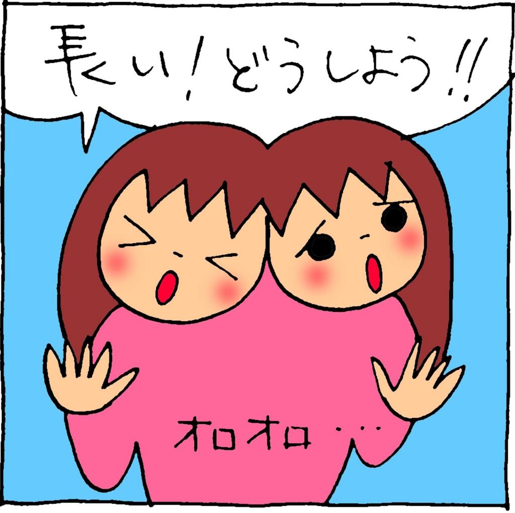 f:id:yasumi-08:20170213170856j:plain