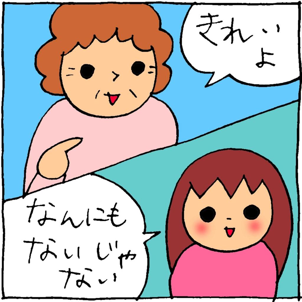 f:id:yasumi-08:20170412222353j:plain