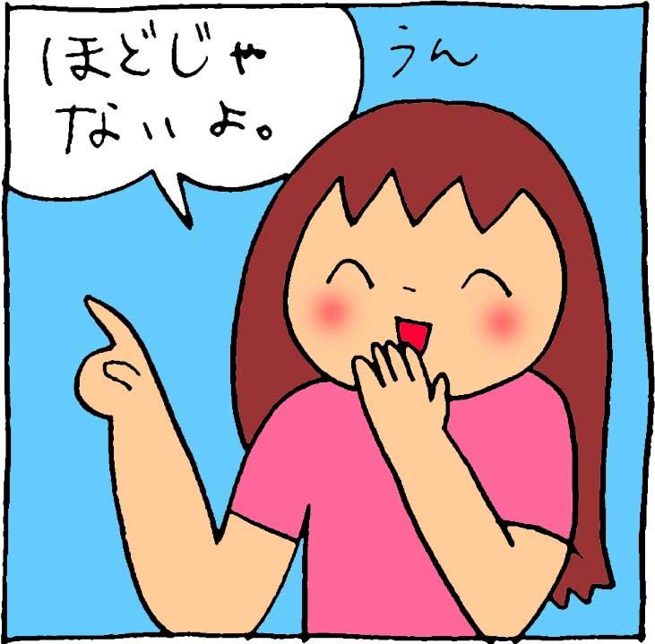 f:id:yasumi-08:20170507190418j:plain