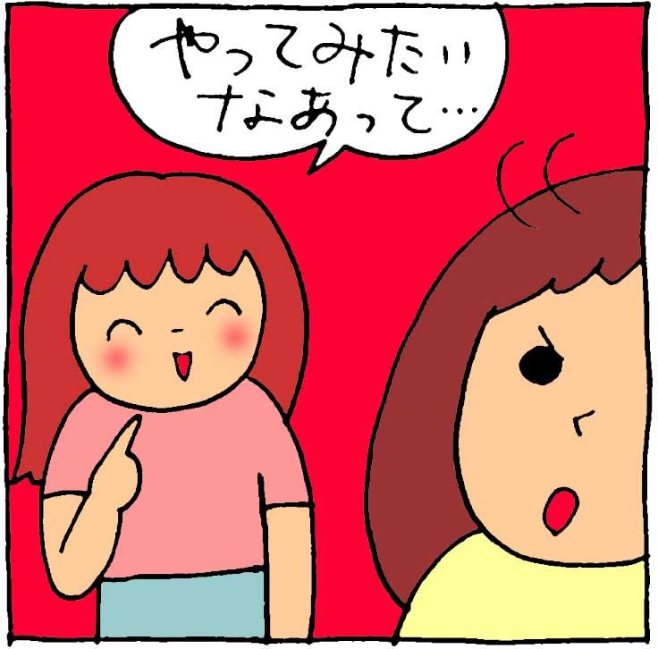 f:id:yasumi-08:20170531221259j:plain