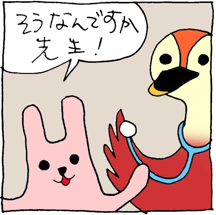 f:id:yasumi-08:20170912133308j:plain