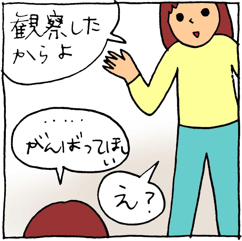 f:id:yasumi-08:20180103113734j:plain