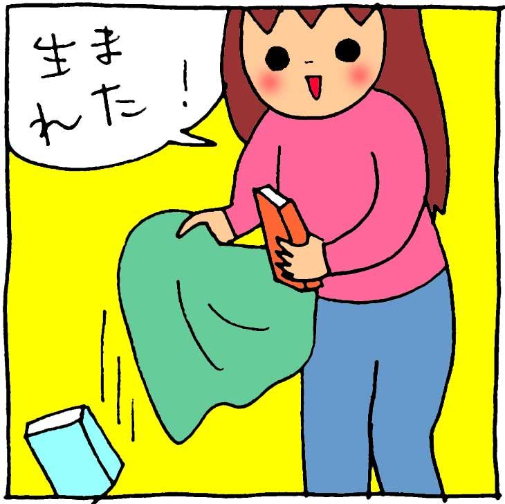f:id:yasumi-08:20180304123106j:plain
