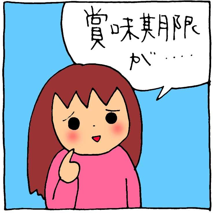 f:id:yasumi-08:20180328135143j:plain