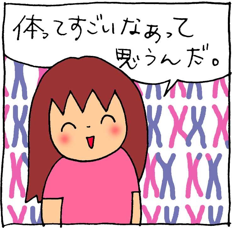 f:id:yasumi-08:20180823213044j:plain
