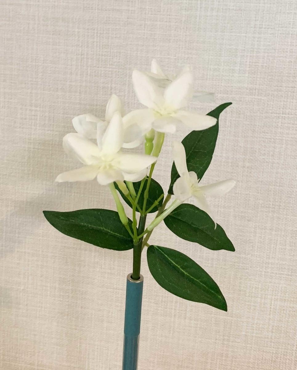 f:id:yasumi-08:20190513102408j:plain
