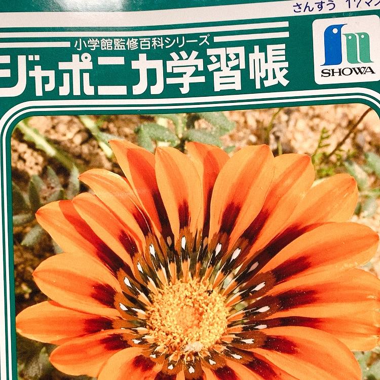 f:id:yasumi-08:20200922164259j:plain