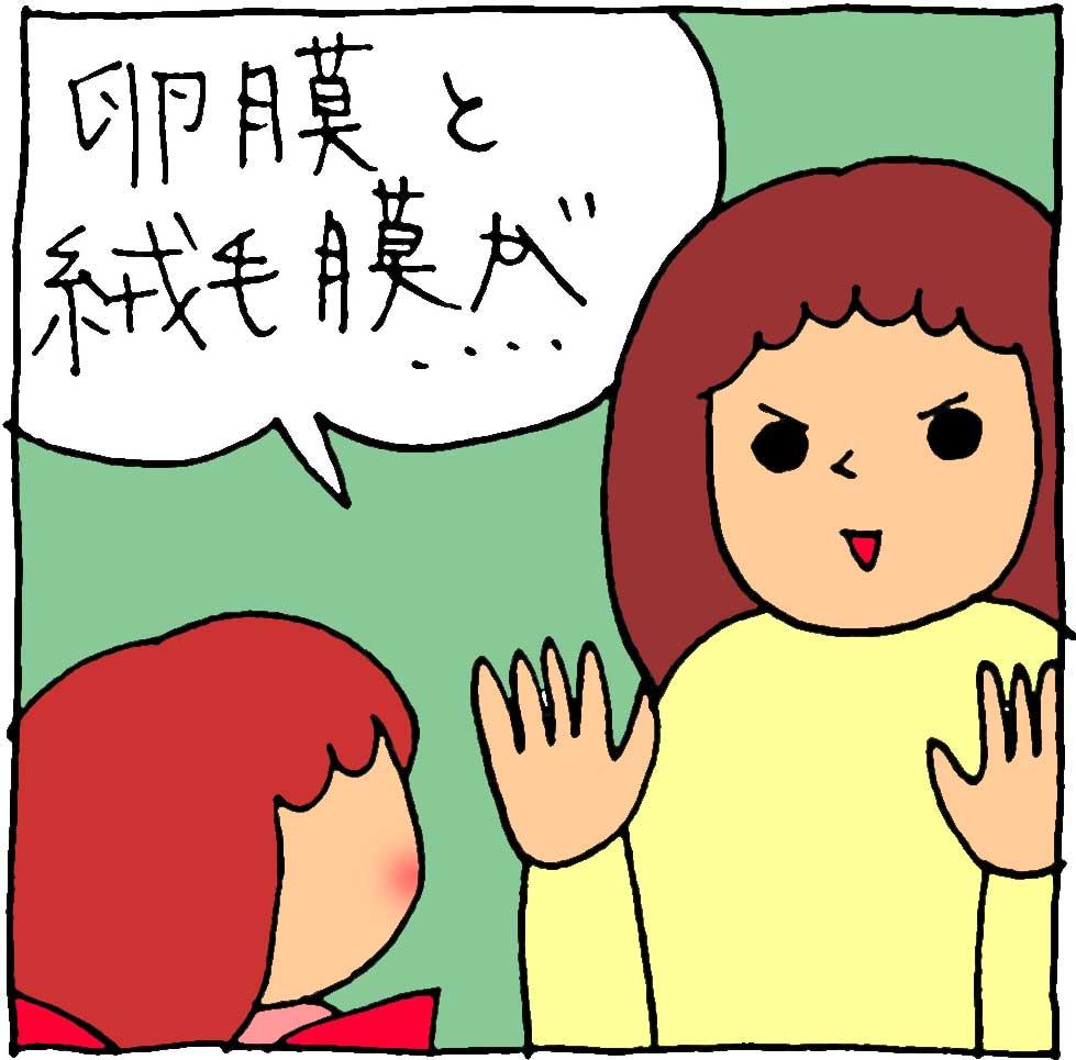 f:id:yasumi-08:20210211181458j:plain