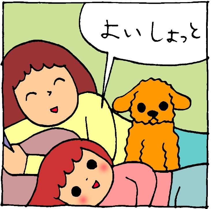 f:id:yasumi-08:20210505114115j:plain
