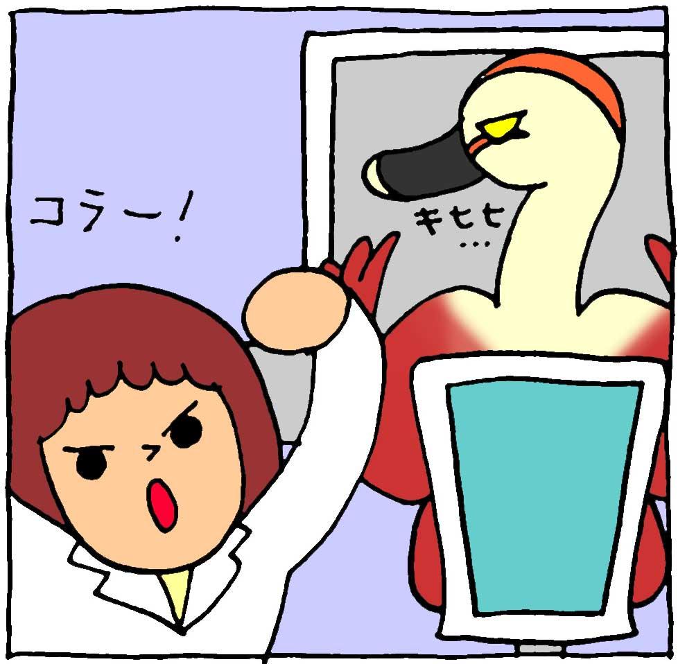 f:id:yasumi-08:20210606194926j:plain