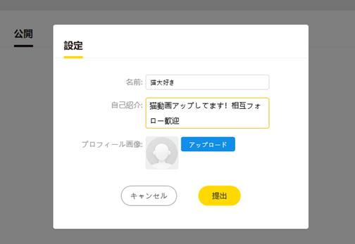 バズビデオアカウント作成 プロフィール