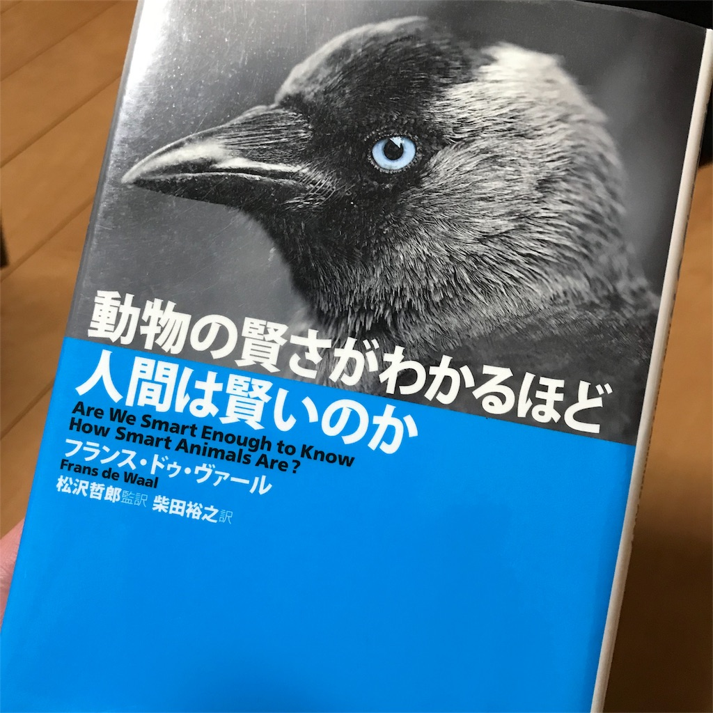 f:id:yasumuni:20180214075910j:image