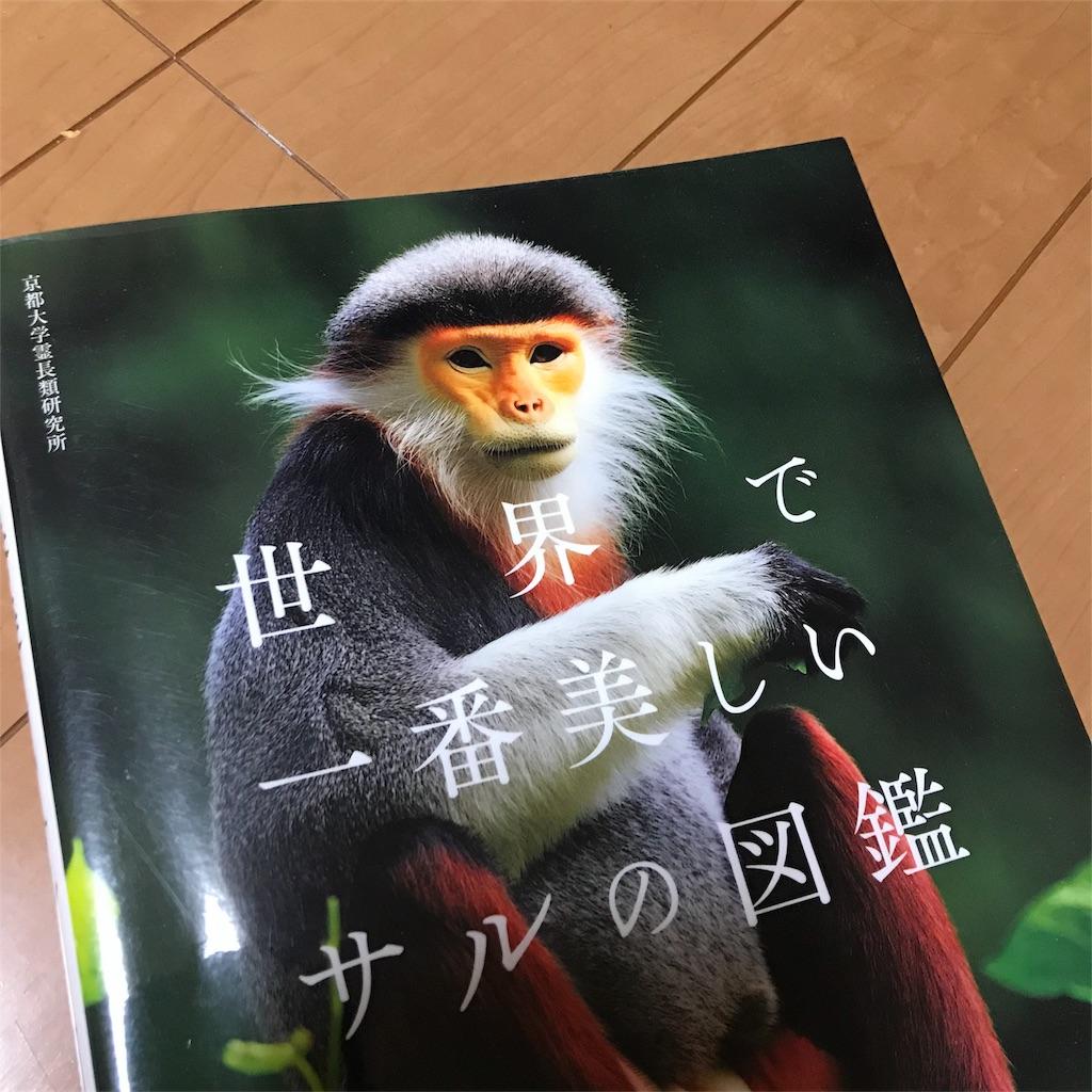 f:id:yasumuni:20180311163844j:image