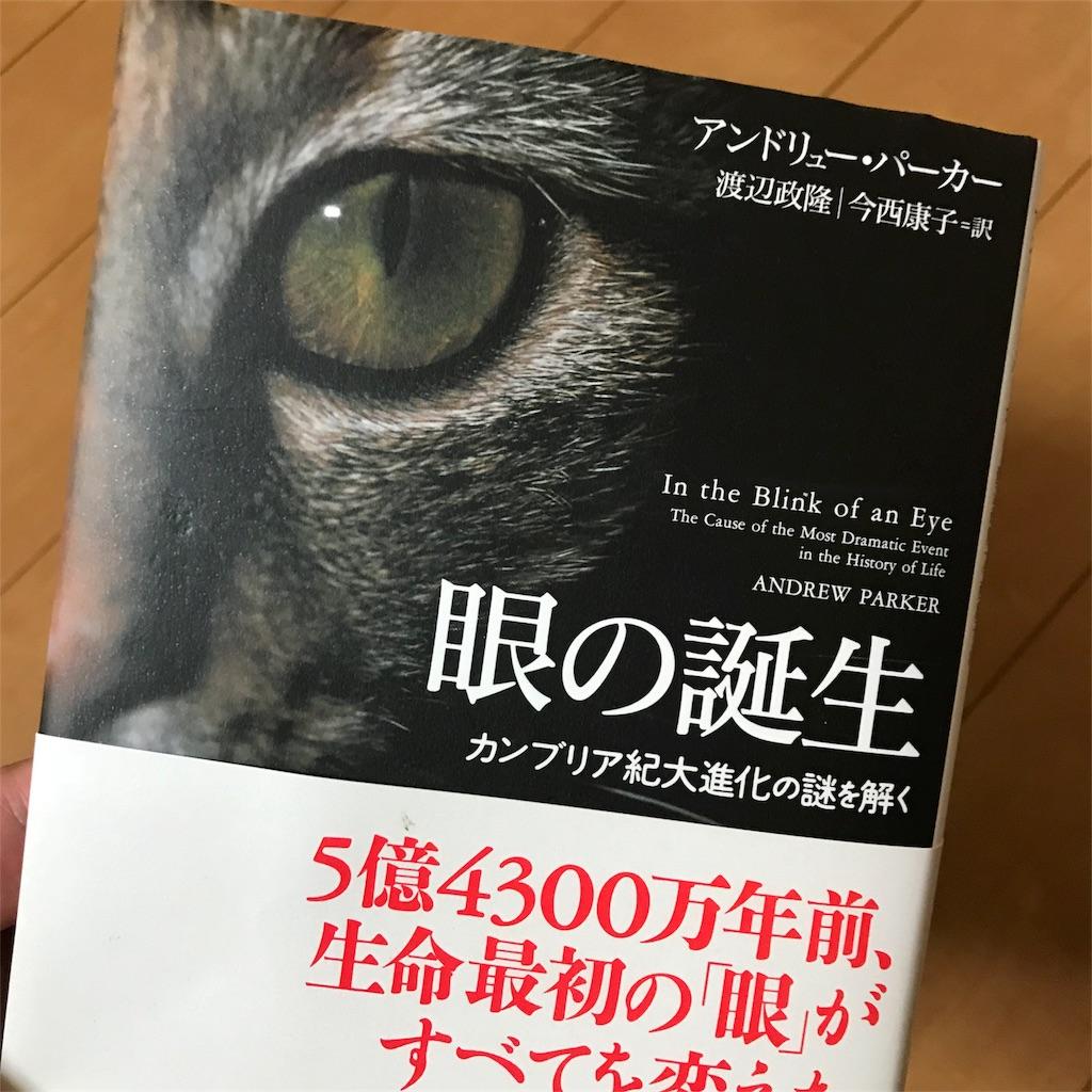 f:id:yasumuni:20180604124313j:image