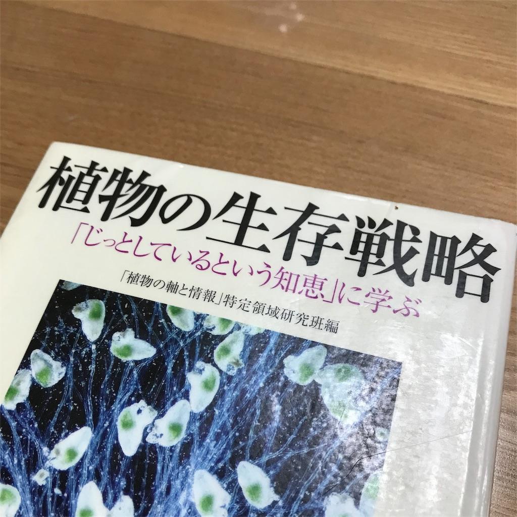 f:id:yasumuni:20180812212919j:image