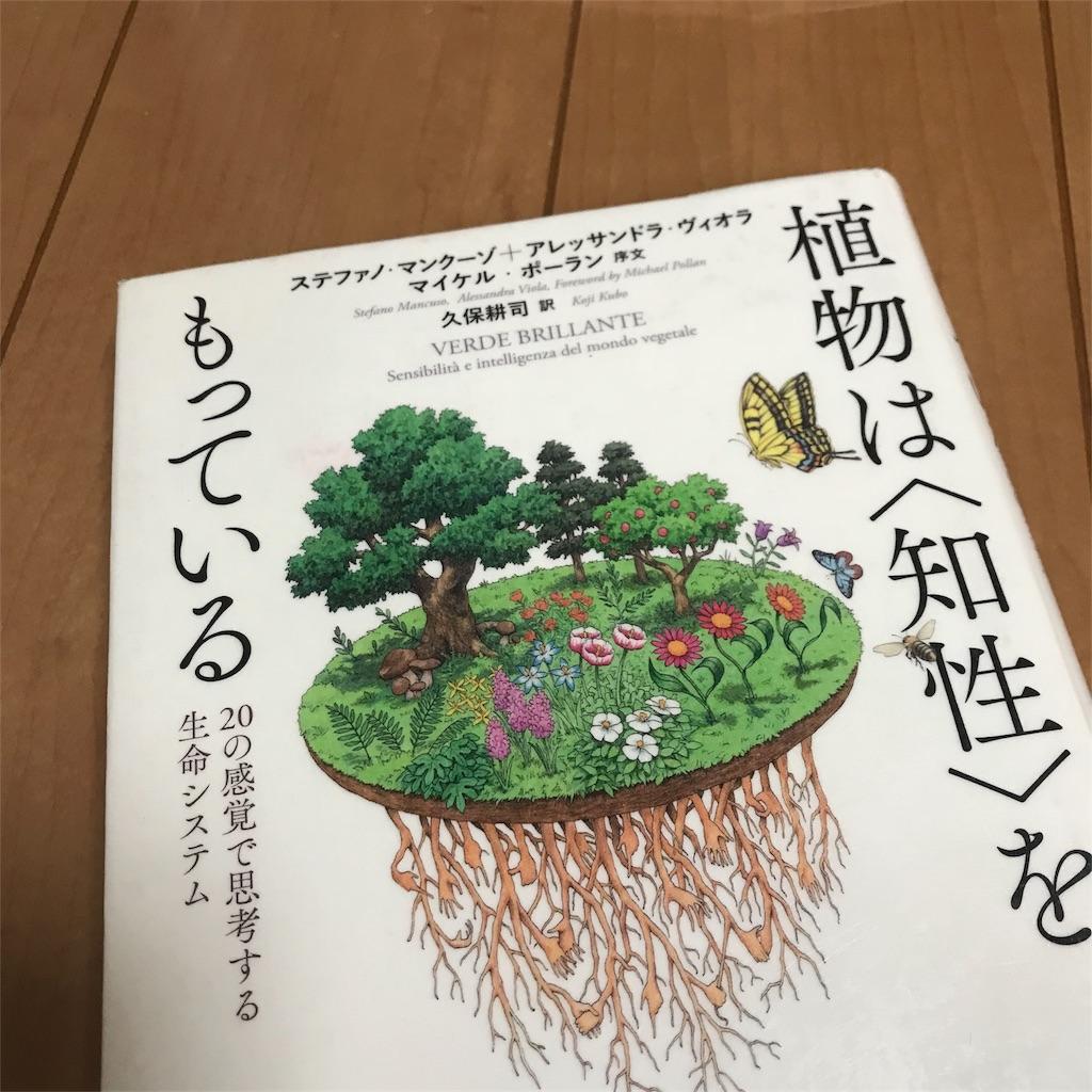 f:id:yasumuni:20180813105335j:image