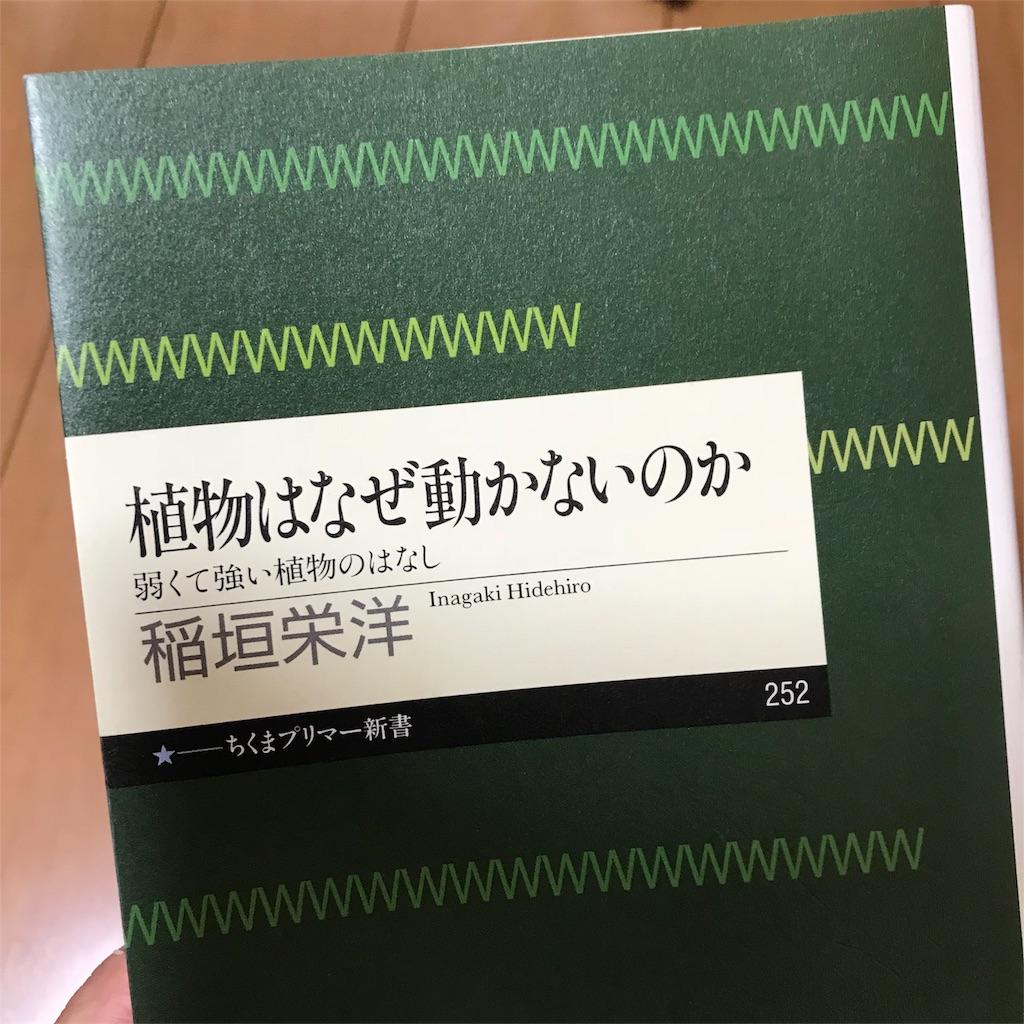 f:id:yasumuni:20180813191200j:image