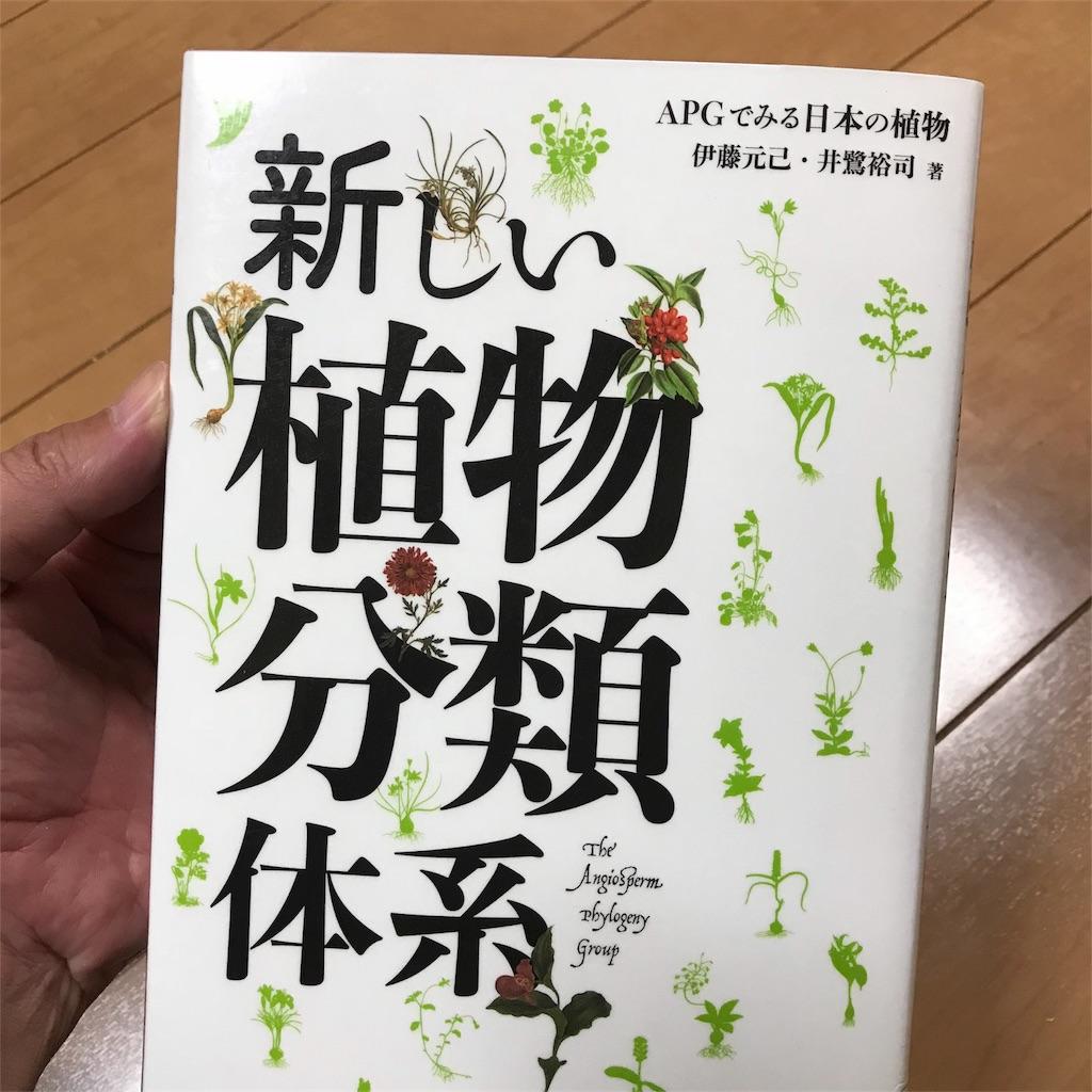f:id:yasumuni:20181028132728j:image