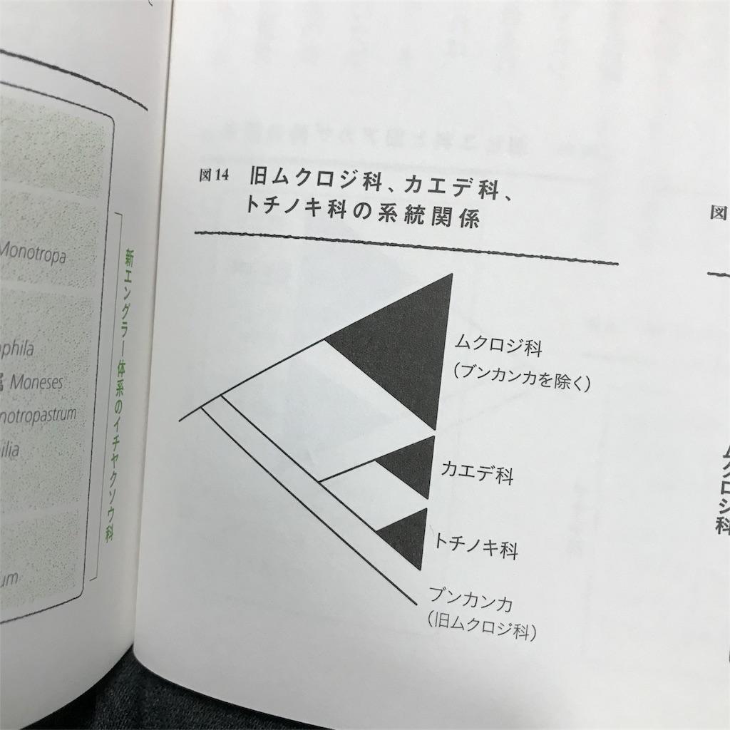 f:id:yasumuni:20181028133546j:image