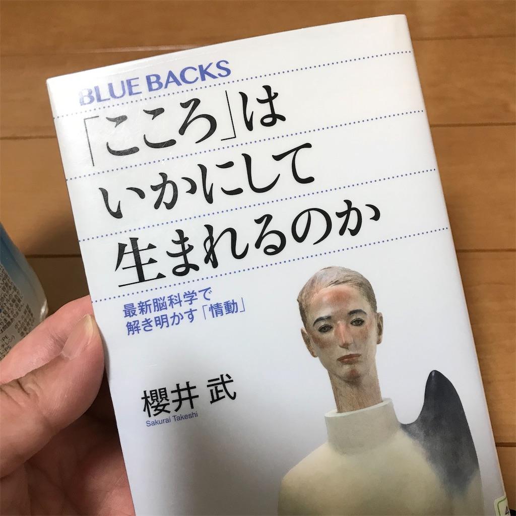 f:id:yasumuni:20190615195937j:image