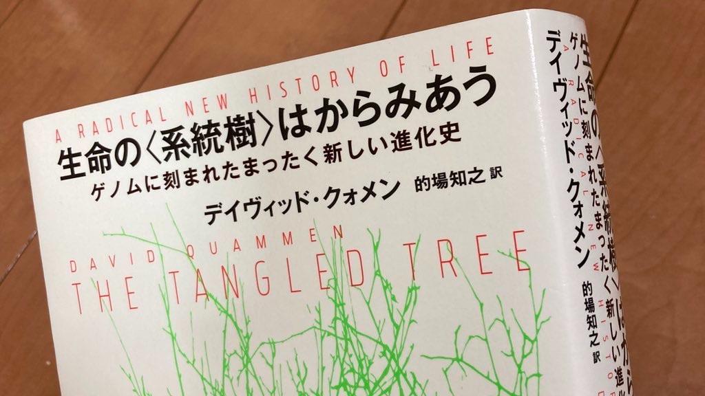 f:id:yasumuni:20210909003641j:image