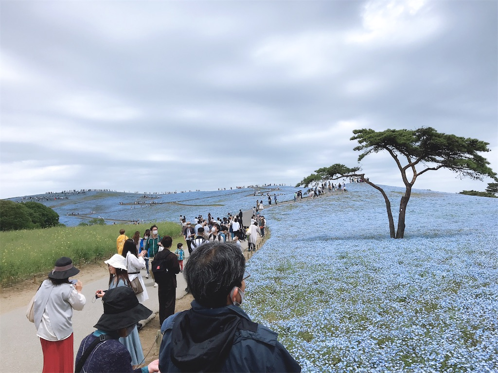 f:id:yasunari7373:20210503101721j:image
