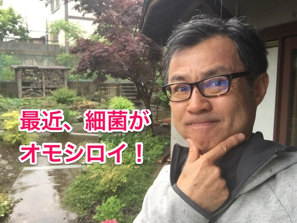 f:id:yasuo567:20170526131024j:plain
